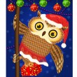 Christmase owl  — Stock Photo