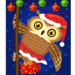 Photo: Christmase owl