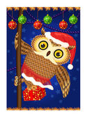 Christmase owl — Stockfoto