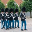 Stock Photo: Danish Royal Life Guards
