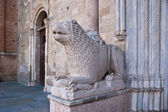 The romanesque lion of parma — Stock Photo