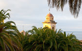 The belfry behind the palms — Stock Photo