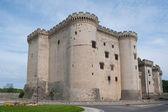 Castle of Tarascon — Stock Photo