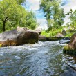 The small river — Stock Photo #29745907