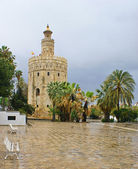 The white tower — Stock Photo