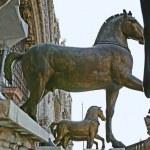 The brave horses — Stock Photo #47701119