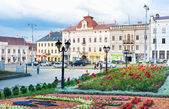 The Chernivtsi cityscape — Stockfoto