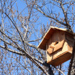 Birdhouse on a tree - Stock Photo