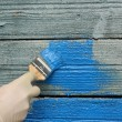 Renovation of house painting — Stock Photo