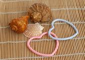 Shells and hearts — Stock Photo