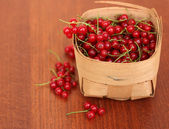 Red currant on a table — Stock Photo