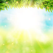 Spring poster with shining sun — Vector de stock
