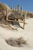 Beach pathway — Stock Photo
