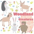 Woodland creatures — Stock Photo #33525525