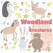 Woodland creatures — Stock Photo