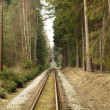 Unique historic narrow-gauge railway - Stock Photo