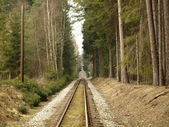 Unique historic narrow-gauge railway — Stock Photo