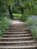Old stairs in park — Stock Photo