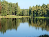 Autumn landscape, southern Bohemia — 图库照片