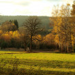 Stock Photo: Autumn landscape, southern Bohemia