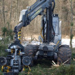 Stock Photo: Machine logging, South Bohemia