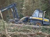 Machine logging, South Bohemia — Stockfoto
