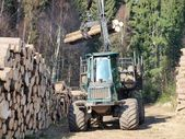 Machine for wood transport — Foto Stock