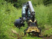 ログ記録、南ボヘミア州をマシンします。 — ストック写真