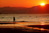 Solitary person walking in the beach at sunset — Stock Photo