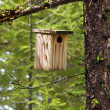 Birdhouse hanging on a tree - Stock Photo