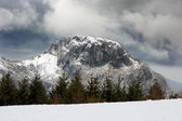 Winter landscape with a mountain and pines — Stock Photo