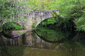 Old and stone bridge in natural environment — Stock Photo