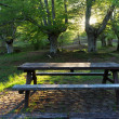 Stock Photo: Picnic table surrounding by trees
