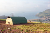 Pig hut on farmland near the sea — Stock Photo