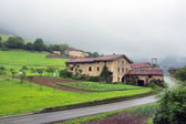 Typical basque architecture near a road — Stock Photo