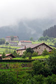 Typical basque country houses — Stock Photo