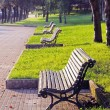 Benches on a park — Stock Photo
