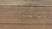 Background with lines in the sand beacause cleaning — Stock Photo