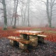 Picnic table in misty forest — Stock Photo