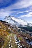 Winter landscape with trail towards snowy mountain — Zdjęcie stockowe
