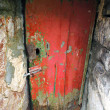 Stock Photo: Old and abandoned house door