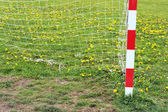Football goal post and net in spring — Photo