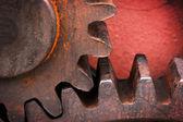 Rusty and metallic gear wheel — Stock Photo