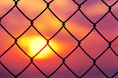 Metallic fence at sunset — Stock Photo