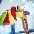 Two girlfriends with shopping bags — Stock Photo #21825345