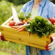 Senior woman holding box with vegetable — Stock Photo #21909117