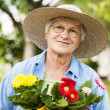 Senior woman with flowers — Stock Photo #21909155