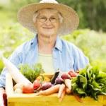 Senior woman with vegetable — Stock Photo #21909273