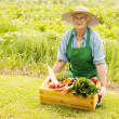Senior woman with vegetable — Stock Photo #21909303
