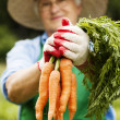 Senior woman with carrot — Stockfoto